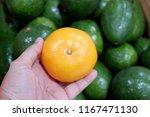 beautiful  yellow  tangerine.   Shutterstock . vector #1167471130