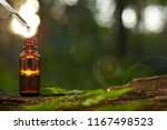 natural remedies  aromatherapy  ... | Shutterstock . vector #1167498523