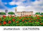 buckingham palace with flower... | Shutterstock . vector #1167535096