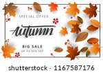 autumn sale background  hand... | Shutterstock .eps vector #1167587176
