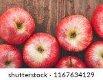 harvest of ripe apples variety... | Shutterstock . vector #1167634129