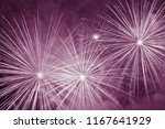 holiday fireworks in night sky | Shutterstock . vector #1167641929