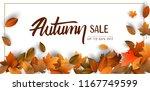 Autumn Sale Background  Hand...