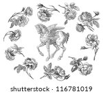 pegasus horse illustration | Shutterstock . vector #116781019