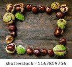 Horse Chestnuts. Autumn...