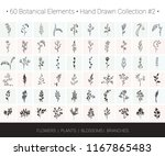botanical vector design set.... | Shutterstock .eps vector #1167865483