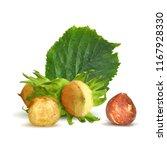 fresh  nutritious  tasty...   Shutterstock .eps vector #1167928330