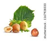 fresh  nutritious  tasty...   Shutterstock .eps vector #1167928333