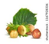 fresh  nutritious  tasty...   Shutterstock .eps vector #1167928336