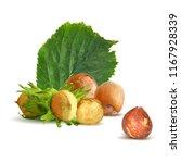 fresh  nutritious  tasty...   Shutterstock .eps vector #1167928339