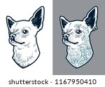 chihuahua dog art. vector dog... | Shutterstock .eps vector #1167950410