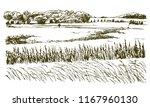rural landscape. hand drawn... | Shutterstock .eps vector #1167960130