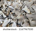 dried shark fins on sale in a... | Shutterstock . vector #1167967030
