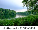 Greenery On The Shore Of Lake...