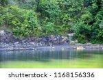 rocky coast. a stony cliff. a... | Shutterstock . vector #1168156336