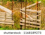 rough pallet fence held... | Shutterstock . vector #1168189273