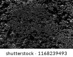abstract background. monochrome ... | Shutterstock . vector #1168239493