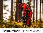 hunter and hunting dogs chasing ... | Shutterstock . vector #1168242826