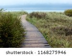 wooden pedestrian road trail... | Shutterstock . vector #1168275946