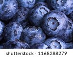 fresh ripe blueberries with... | Shutterstock . vector #1168288279