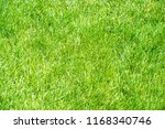 urban photography  a lawn is an ... | Shutterstock . vector #1168340746