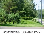 urban photography  a lawn is an ... | Shutterstock . vector #1168341979