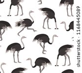 Cartoon Ostrich Gray Bird...