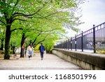 japanese garden  the garden in...   Shutterstock . vector #1168501996
