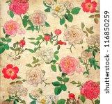 antique floral vintage... | Shutterstock . vector #116850259