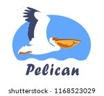pelican flying over a sea with...   Shutterstock .eps vector #1168523029