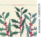 christmas vector illustration... | Shutterstock .eps vector #116855170