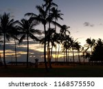 trees and sunset | Shutterstock . vector #1168575550