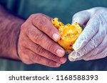 a turkish mediterranean culture ...   Shutterstock . vector #1168588393