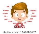 my head parts for a boy.... | Shutterstock .eps vector #1168600489