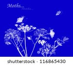 silhouettes of flowers and... | Shutterstock .eps vector #116865430