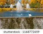the mezhyhirya national park in ...   Shutterstock . vector #1168772659