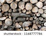 firewood for the winter  stacks ... | Shutterstock . vector #1168777786