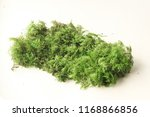 color synthetical moss for... | Shutterstock . vector #1168866856