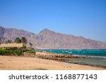 coast of the aqaba gulf from...   Shutterstock . vector #1168877143