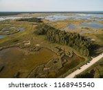 latvia  jurmala   august 30 ... | Shutterstock . vector #1168945540