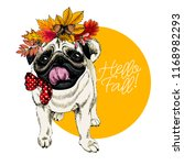 vector portrait of pug dog... | Shutterstock .eps vector #1168982293