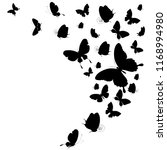 black butterfly  isolated on a... | Shutterstock .eps vector #1168994980