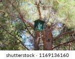 bird house on tree | Shutterstock . vector #1169136160
