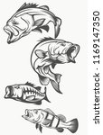 bass fish black and white on... | Shutterstock .eps vector #1169147350