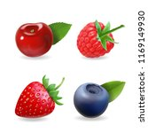 berry set. forest realistic... | Shutterstock . vector #1169149930