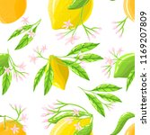 seamless pattern vector with... | Shutterstock .eps vector #1169207809