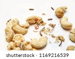 a picture of cashew nuts...   Shutterstock . vector #1169216539