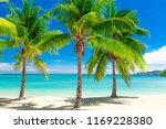 tropical beach with coconut... | Shutterstock . vector #1169228380