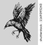 black raven. hand drawn sketch... | Shutterstock .eps vector #1169395243