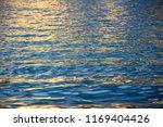 the surface water is golden...   Shutterstock . vector #1169404426